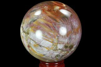 "Buy 3.7"" Colorful, Petrified Wood Sphere - Madagascar - #98458"