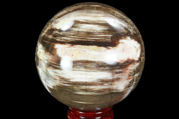 "3.65"" Petrified Wood Sphere - Madagascar"
