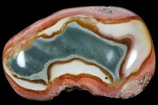 Polychrome Jasper - Fossils For Sale - #99621