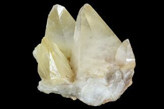 Calcite - Fossils For Sale - #99675
