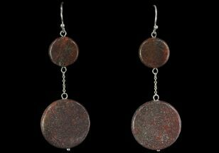 Buy Polished Fossil Dinosaur Bone (Gembone) Earrings - #93427