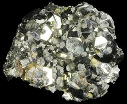 "Buy 2.2"" Gleaming Pyrite & Galena Crystal Cluster - Peru - #99130"