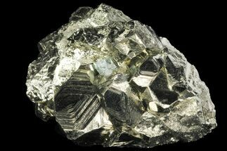 Pyrite - Fossils For Sale - #99132
