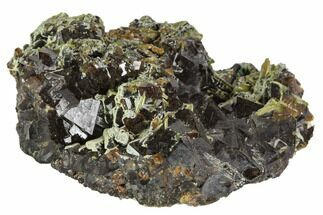 "Buy 2.5"" Garnet Cluster with Mica, Feldspar and Epidote- Pakistan - #100402"
