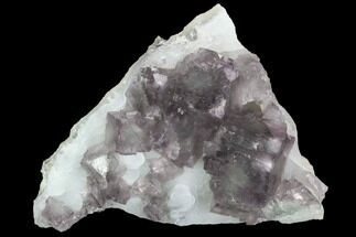 Fluorite & Quartz - Fossils For Sale - #100725