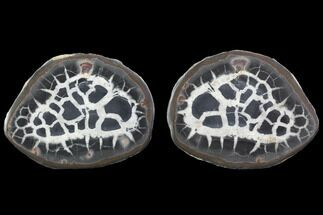 "Buy 3.2"" Cut/Polished Septarian Nodule Pair - Morocco - #101215"