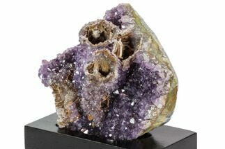 "5.1"" Wide, Purple Amethyst Crystal Cluster On Wood Base - Uruguay For Sale, #101462"