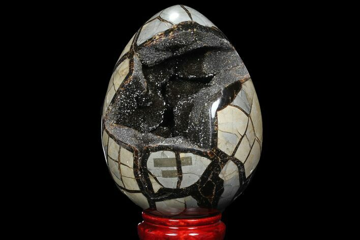 "7"" Septarian ""Dragon Egg"" Geode - Black Crystals"
