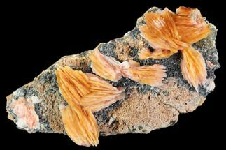 "3.8"" Pink and Orange Bladed Barite Flowers On Galena For Sale, #103700"