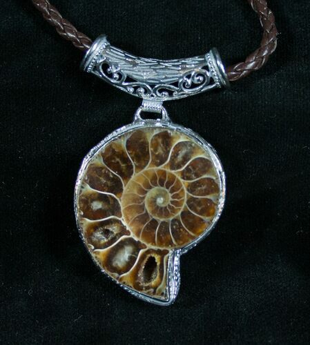 Ammonite Necklace - 110 Million Year Old Fossil
