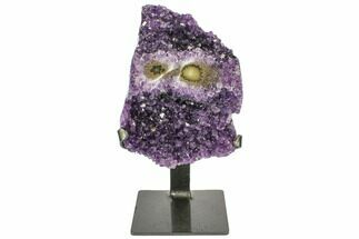 "7.1"" Amethyst Geode on Metal Stand - Great Color For Sale, #104576"