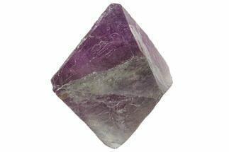 Fluorite - Fossils For Sale - #104727