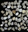Wholesale Lot: Clear Quartz Points - 108 Pieces - Morocco - #104611-1