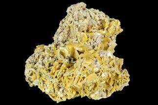 Wulfenite - Fossils For Sale - #105570