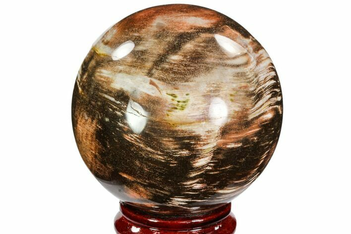 "3.6"" Colorful Petrified Wood Sphere - Madagascar"