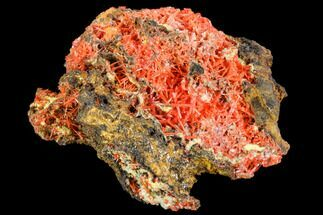 Crocoite - Fossils For Sale - #106806