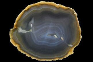 "Buy 6.2"" Polished Brazilian Agate Slice - #107368"