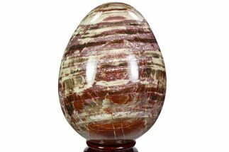 "Buy 4"" Colorful, Polished Petrified Wood ""Egg"" - Triassic - #107398"