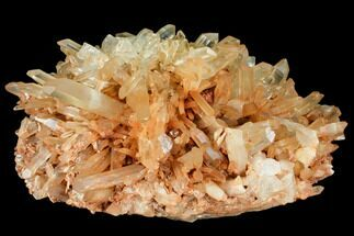 "14.5"" Wide Tangerine Quartz Crystal Cluster - Madagascar For Sale, #107084"