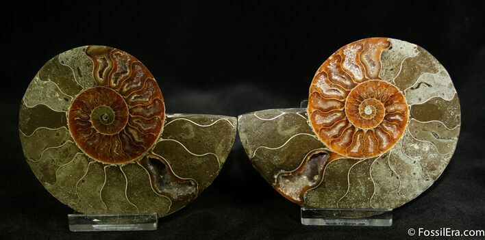 3.6 Inch Polished Pair From Madagascar