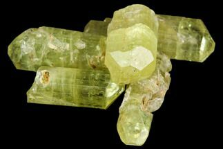 "Bag Of Five Yellow Apatite Crystals (.5"" - 1"") - Morocco For Sale, #108368"