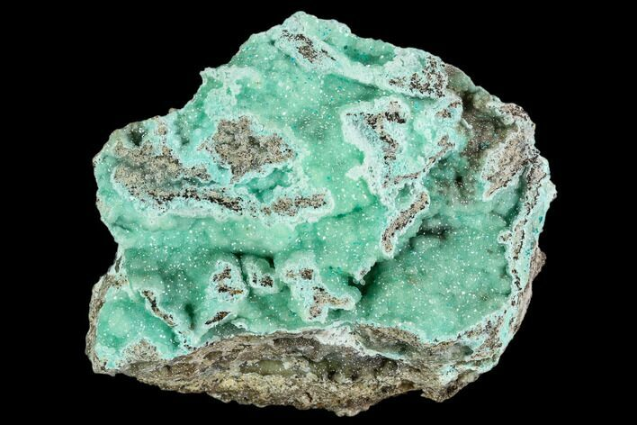 "2.5"" Blue-Green Smithsonite Aggregation - Hidden Treasure Mine, Utah"