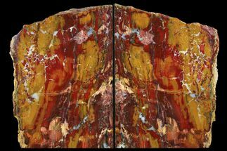 "9.5"" Red/Yellow Jasper Replaced Petrified Wood Bookends - Oregon For Sale, #111096"