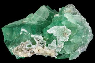 "Buy 2.1"" Green Fluorite Crystal Cluster - South Africa - #111568"