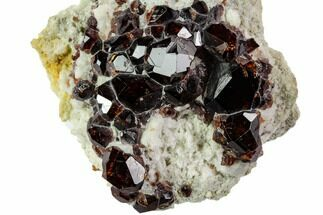 Garnet var. Spessartine & Albite - Fossils For Sale - #112329