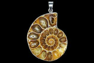 Jewelry With Fossils For Sale