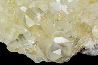 "6.7"" Quartz Crystal Cluster - Brazil For Sale, #81011"