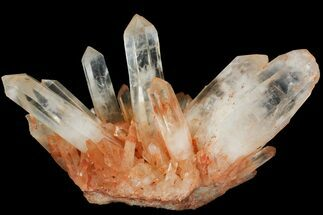"Buy 10.3"" Tangerine Quartz Crystal Cluster - Giant Crystals - #112804"