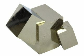 Pyrite - Fossils For Sale - #71640