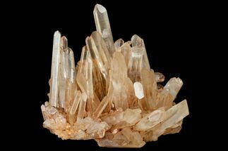 "6.6"" Tangerine Quartz Crystal Cluster - Madagascar For Sale, #112814"