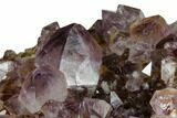 "3.7"" Wide, Amethyst Crystal Cluster - South Africa - #115391-2"