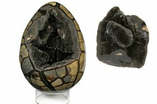 "Buy 9.6"" Septarian ""Dragon Egg"" Geode - Removable Section - #121264"