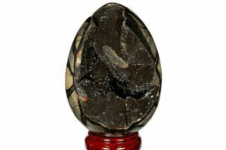 "Buy 6.9"" Septarian ""Dragon Egg"" Geode - Black Crystals - #121255"