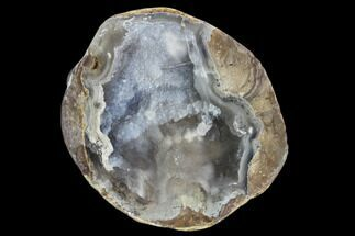 "2.8"" Crystal Filled Dugway Geode (Polished Half) For Sale, #121736"