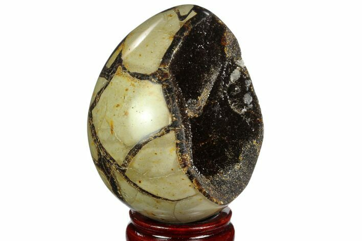 "4.1"" Septarian ""Dragon Egg"" Geode - Black Crystals"