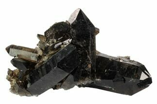 "Buy 8.7"" Dark Smoky Quartz Crystal Cluster - Brazil - #124597"