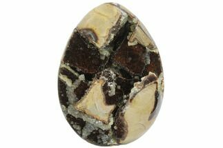 Septarian with Calcite  - Fossils For Sale - #123012