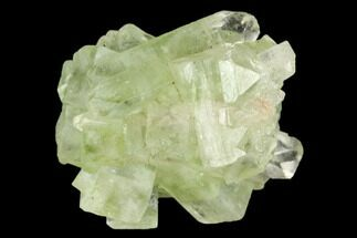 "Buy 1.1"" Green Apophyllite Crystal Cluster - India - #126115"