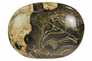 "Buy 2.45"" Polished Stromatolite (Greysonia) Pebble - Bolivia - #126352"