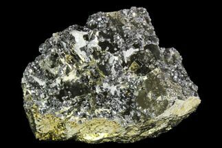 "2.3"" Pyrite, Galena, Sphalerite and Quartz Association - Peru For Sale, #126578"