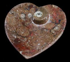 Heart Shaped Fossil Goniatite Dish For Sale, #8870