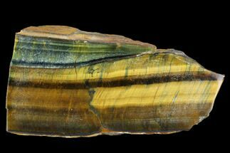 "Buy 4.3"" Polished Tiger's Eye Section - South Africa - #128476"