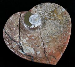 "6.5"" Heart Shaped Fossil Goniatite Dish For Sale, #8996"