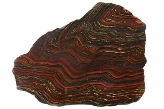 "Buy 13.1"" Polished Tiger Iron Stromatolite - 3.02 Billion Years - #129343"