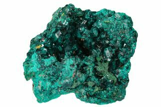 "Buy 2.5"" Gemmy Dioptase Crystal Cluster - Congo - #129547"