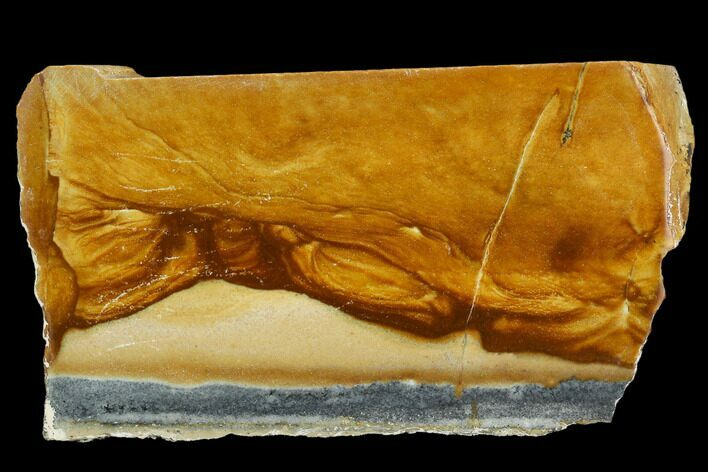 "4.3"" Polished Golden Picture Jasper Section - Nevada"